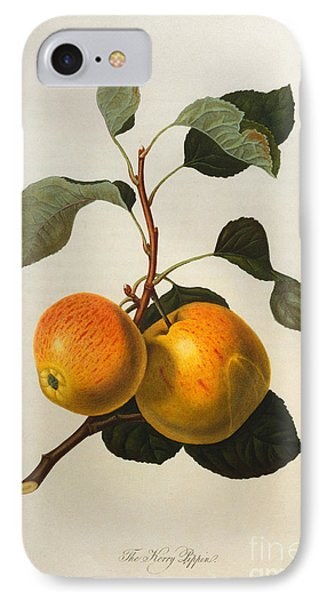 The Kerry Pippin IPhone 7 Case by William Hooker