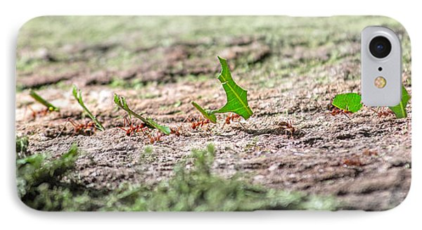 The Leaf Parade  IPhone 7 Case by Betsy Knapp