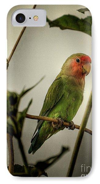 The Lovebird  IPhone Case by Saija  Lehtonen