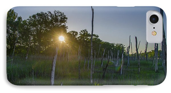 The New Jersey Pine Barrens IPhone Case by Bill Cannon