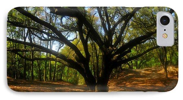 The Sacred Oak Phone Case by David Lee Thompson