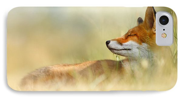 The Sleeping Beauty - Wild Red Fox IPhone Case by Roeselien Raimond