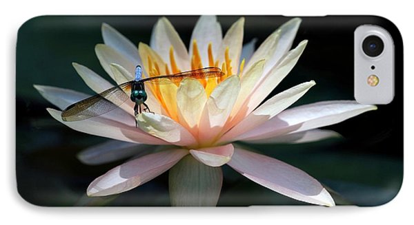 The Water Lily And The Dragonfly Phone Case by Sabrina L Ryan
