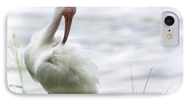 The White Ibis  IPhone Case by Saija  Lehtonen