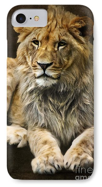 The Young Lion IPhone Case by Angela Doelling AD DESIGN Photo and PhotoArt