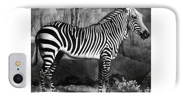 The Zebra IPhone 7 Case by George Stubbs