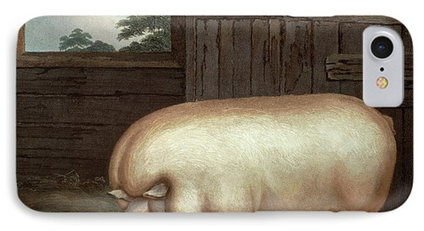 This Remarkable Animal IPhone Case by Benjamin Gale