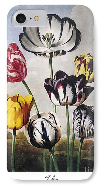 Thornton: Tulips Phone Case by Granger