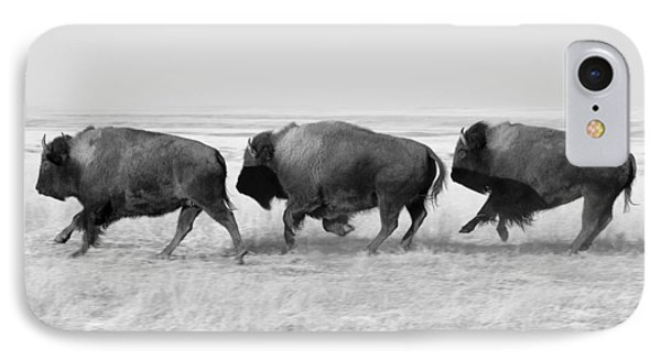 Three Buffalo In Black And White IPhone Case by Todd Klassy