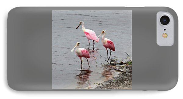 Three Roseate Spoonbills Square IPhone Case by Carol Groenen