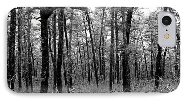 Through The Pinelands IPhone Case by John Rizzuto