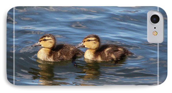 Tiny Ducklings - Framed IPhone Case by Sandra Huston