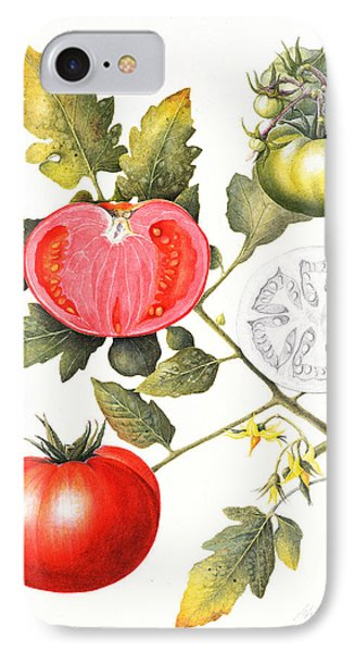 Tomatoes IPhone Case by Margaret Ann Eden