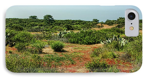 Torrey Pines California - Colourful Verdant And Arid Juxtaposition IPhone Case by Georgia Mizuleva
