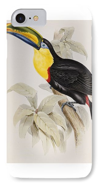 Toucan IPhone 7 Case by John Gould