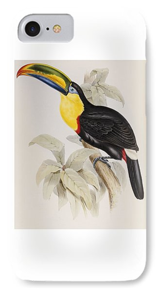 Toucan IPhone Case by John Gould