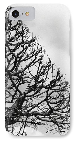 Triangle Tree IPhone Case by Linda Woods