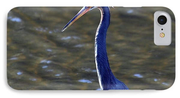 Tricolored Heron Pose Phone Case by Al Powell Photography USA