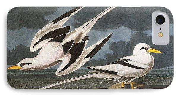 Tropic Bird Phone Case by John James Audubon