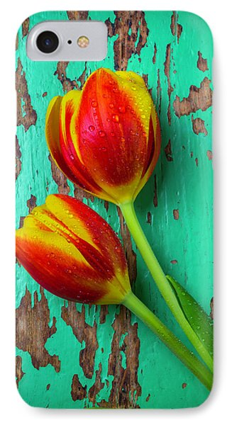 Tulips On Green Wood IPhone Case by Garry Gay
