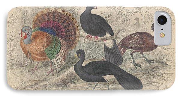 Turkeys IPhone 7 Case by Oliver Goldsmith