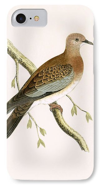 Turtle Dove IPhone 7 Case by English School
