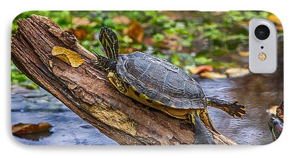 Turtle Yoga IPhone Case by John Haldane