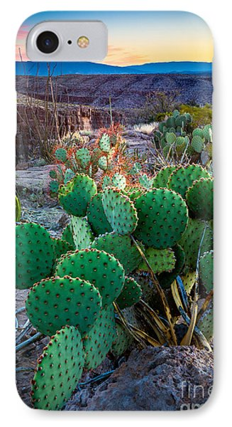Twilight Prickly Pear IPhone Case by Inge Johnsson