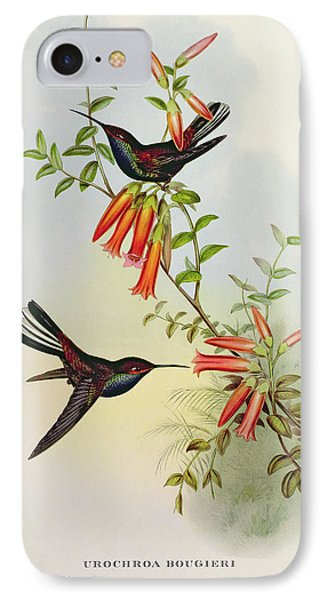 Urochroa Bougieri IPhone Case by John Gould