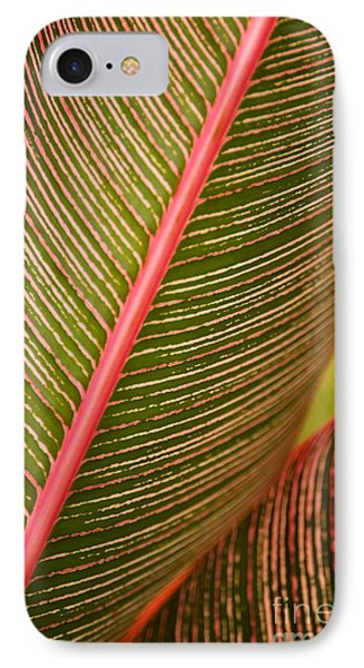 Variegated Ti-leaf 1 Phone Case by Ron Dahlquist - Printscapes
