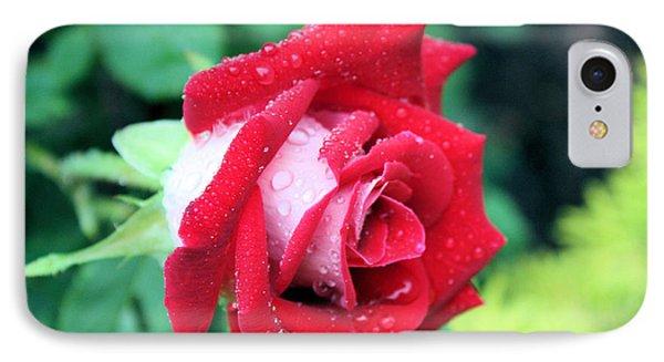 Very Dewy Rose Phone Case by Kristin Elmquist