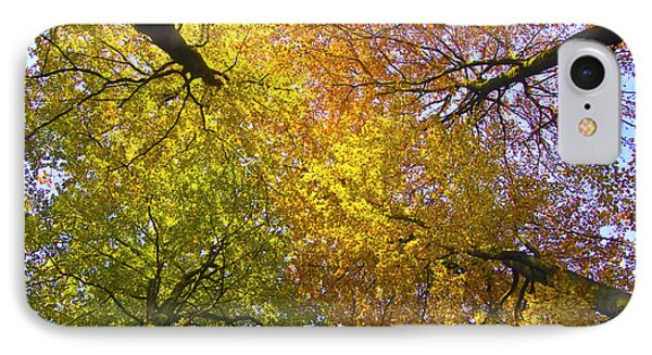 View To The Top Of Beech Trees Phone Case by Heiko Koehrer-Wagner