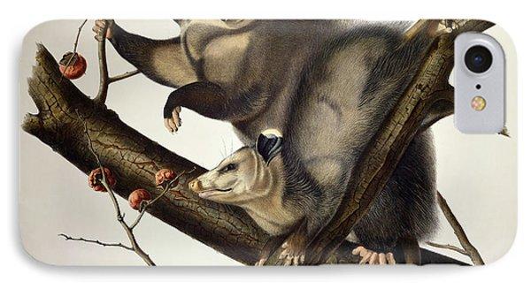 Virginian Opossum IPhone Case by John James Audubon