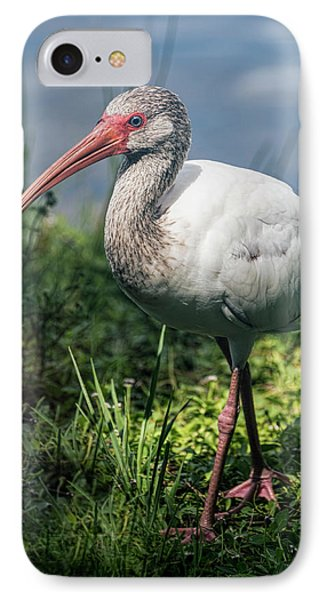Walk On The Wild Side  IPhone Case by Saija Lehtonen