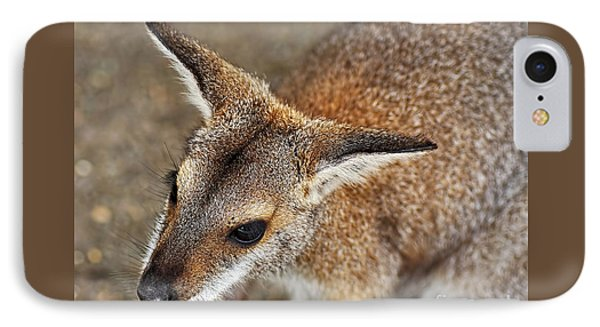 Wallaby Portrait Phone Case by Kaye Menner