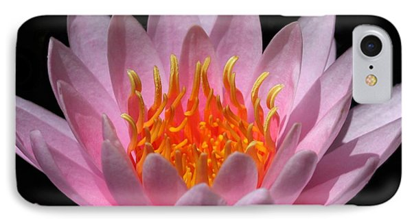 Water Lily On Fire Phone Case by Sabrina L Ryan