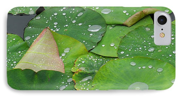 Waterdrops On Lotus Leaves IPhone Case by Silke Magino