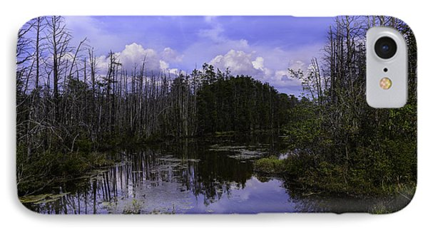 Webb Cedar Swamp Blog IPhone Case by Louis Dallara