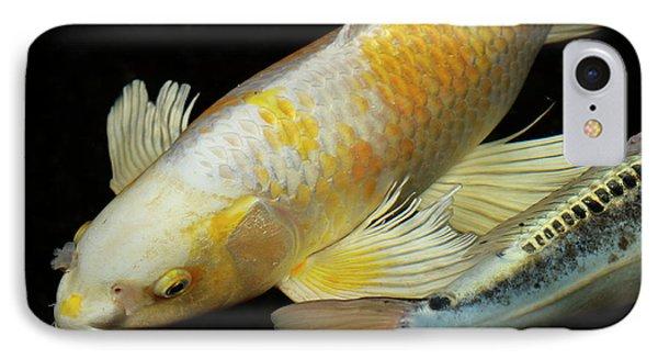 White And Yellow Yamabuki Hariwake Butterfly Koi Fish At Night W IPhone Case by Reimar Gaertner