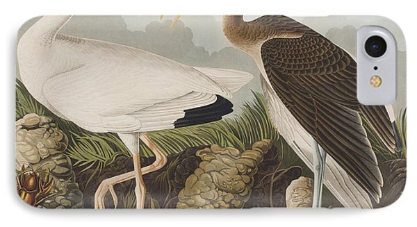 White Ibis IPhone Case by John James Audubon