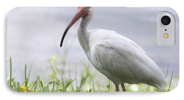 White Ibis  IPhone 7 Case by Saija  Lehtonen