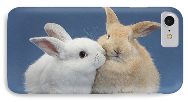 White Rabbit And Sandy Rabbit IPhone Case by Mark Taylor