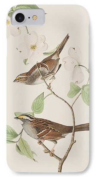 White Throated Sparrow IPhone Case by John James Audubon