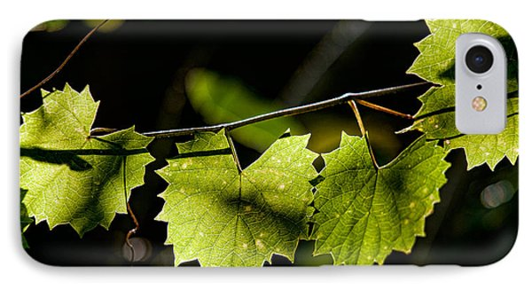 Wild Grape Leaves Phone Case by Christopher Holmes