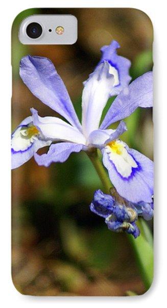 Wild Iris Phone Case by Marty Koch