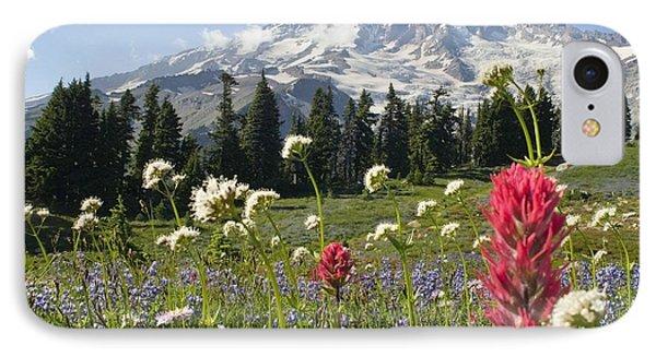 Wildflowers In Mount Rainier National IPhone Case by Dan Sherwood