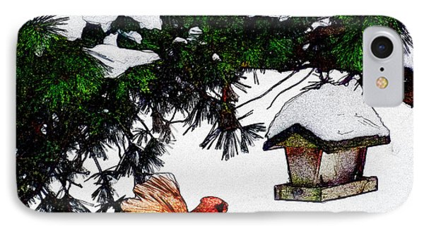 Winter Birdfeeder IPhone Case by Anthony Caruso