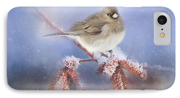 Winter Chill IPhone Case by Darren Fisher