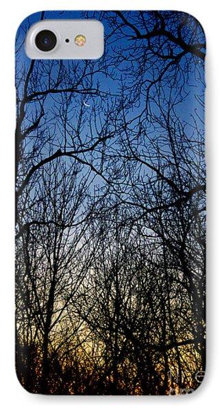 Winter Crescent Moon IPhone Case by Karen Adams