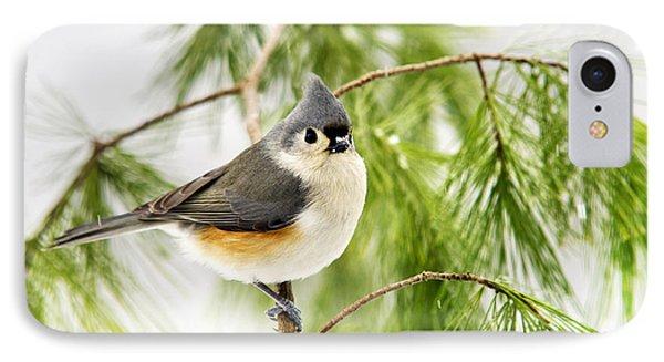 Winter Pine Bird IPhone 7 Case by Christina Rollo
